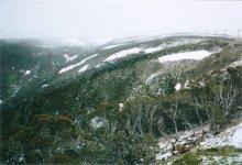 Mt Hotham.jpg